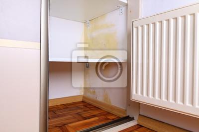 pilz an der wand kreative with pilz an der wand cool schimmel with pilz an der wand great. Black Bedroom Furniture Sets. Home Design Ideas