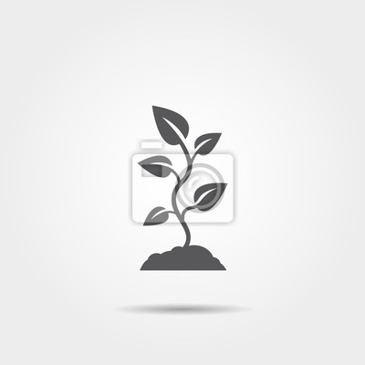 Pflanze sprießen symbol leinwandbilder • bilder Kultivierung ...