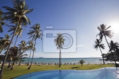 Pool und Palmen.