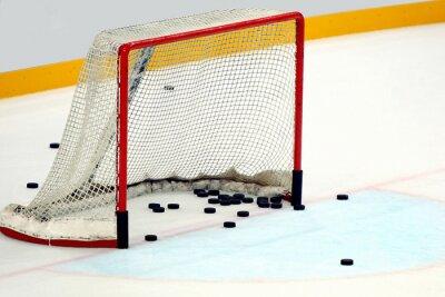Bild Porta hockey  con dischi