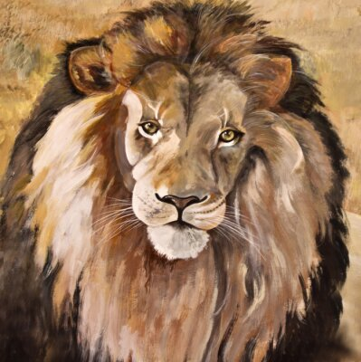 Bild Portrait der schönen großen männlichen afrikanischen Löwen