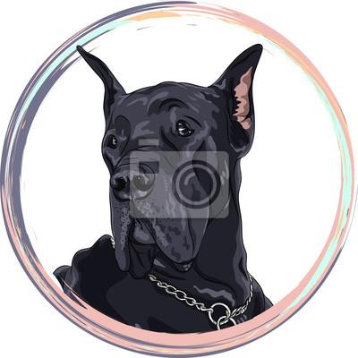 Bild Portrait schwarzen Hund. Dog Dogge züchten im runden Rahmen. T-Shirt Grafiken. Hund drucken.