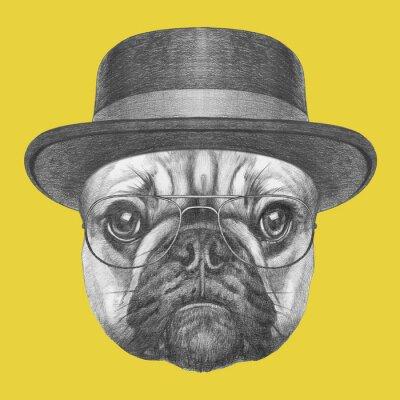 Bild Porträt von Französisch Bulldog mit Hut und Brille. Hand, die Abbildung.
