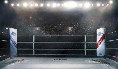Bild Profi-Box-Arena in Lichter 3D-Rendering
