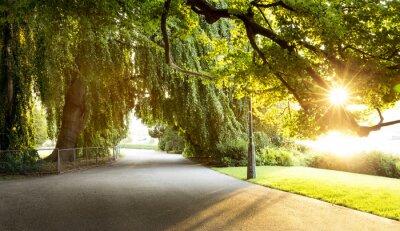 Bild Promenade in einem schönen Stadtpark