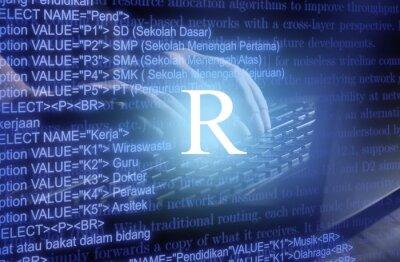 Bild R analysis language software ai algorithm application