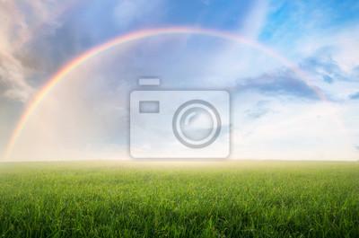 Bild Rainbow with meadow.