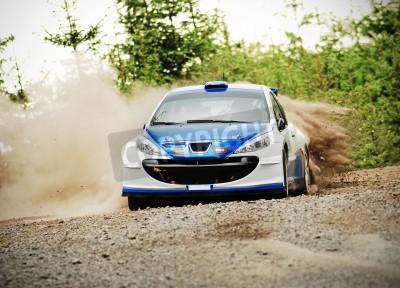 Bild Rally car in action