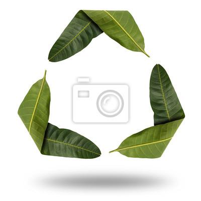 Recycling-Symbol mit Blatt isolieren auf weiß