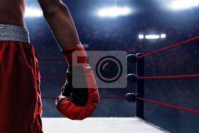 Bild Red boxing glove