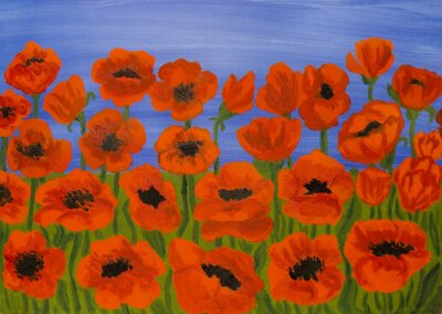 Bild Red poppies