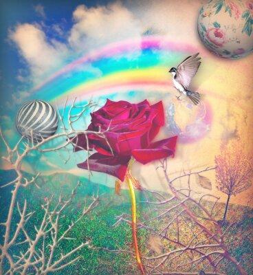 Regenbogen und rote Rose im grünen Tal