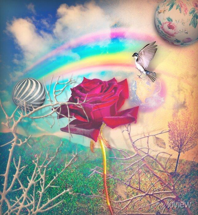 Bild Regenbogen und rote Rose im grünen Tal