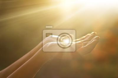 Bild Respekt und beten, menschliche Hände auf Natur Hintergrund