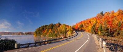 Bild road in autumn