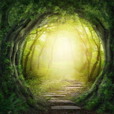 Bild Road in dunklen Wald