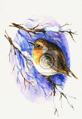 Robin Aquarell malte.