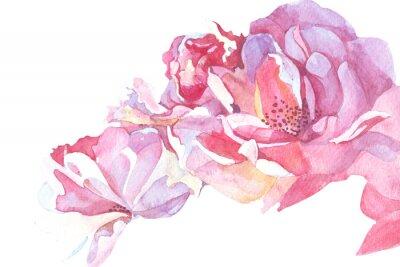 Bild Rosa Hintergrund Aquarell-Illustration