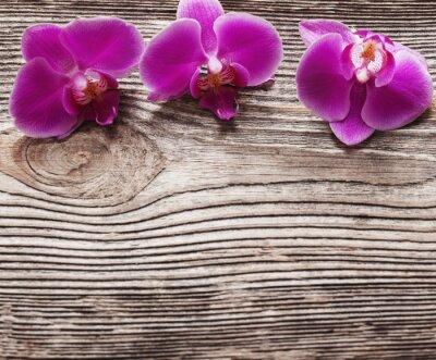 Bild Rosa Orchidee Blumen auf einem hölzernen Hintergrund