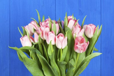 Bild Rosa Tulpen Blumenstrauß Großansicht