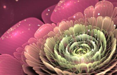 Bild rosa und grünen fraktale Blume