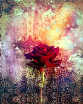 Rote Rose in den Hintergrund Grunge