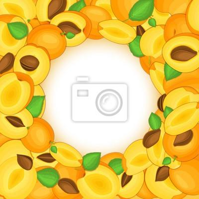 Runder farbiger rahmen bestanden aus köstlicher aprikosenfrucht ...
