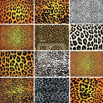 Sammlung von 12 Vektor-Textur der Haut Tier