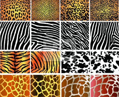 Sammlung von 16 Vektor- Haut Tier Textur