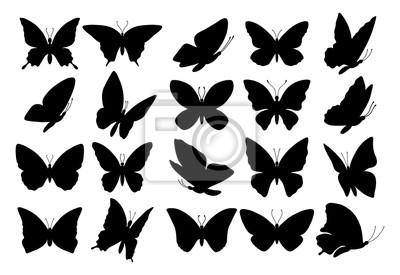 Bild Satz von Schmetterling Silhouetten