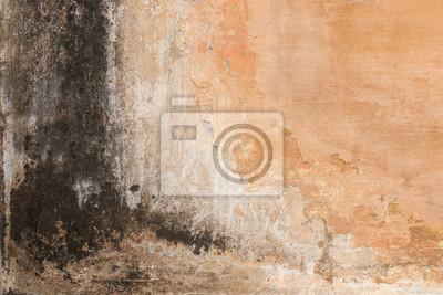 Schabige Alte Putz Wand Mit Schwarzen Schimmel Flecken Und Flecken