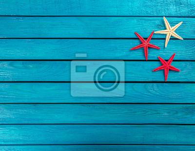 Schale, Strand, Banner, Meer