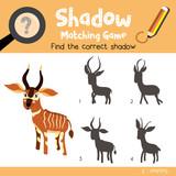 Schatten matching spiel von ozean tiere für vorschule kinder ...