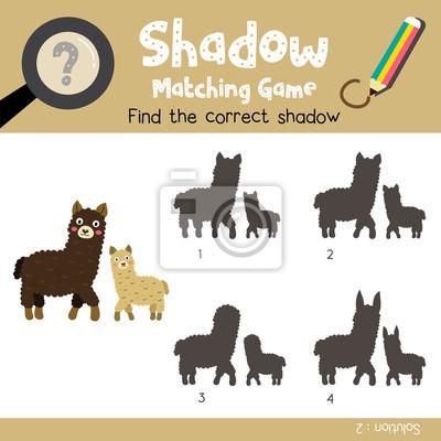 Schatten matching spiel von mutter und kind alpakas tiere für ...