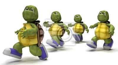 Schildkröten läuft in Turnschuhen