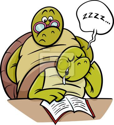 Schlaf Schildkrote Auf Lektion Cartoon Leinwandbilder Bilder