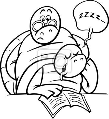 Schlaf Schildkrote Auf Lektion Malvorlagen Leinwandbilder Bilder