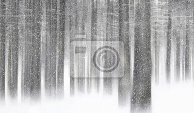 Schneefall in den Wald