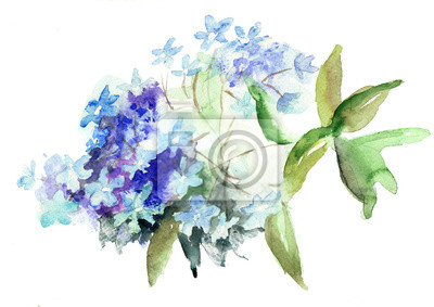 Schöne blaue Blumen Hydrangea