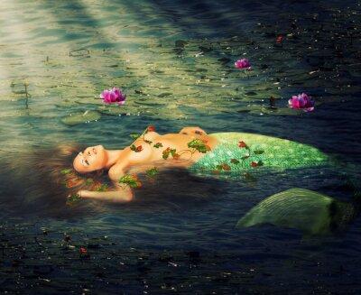 Bild Schöne Frau, die Meerjungfrau