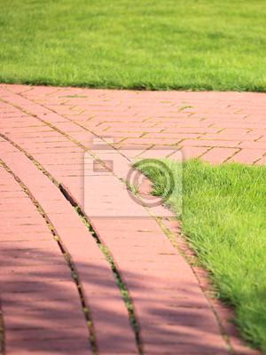 Bild Schöne grüne Rasenflächen perfekt für die Hintergrund geschnitten