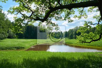Schöne Landschaft im Pavlovsk Park. Sankt Petersburg