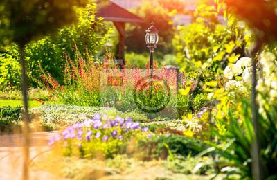 Bild Schöne Landschaftsgestaltung mit schönen Pflanzen