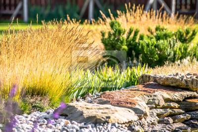Bild Schöne Landschaftsgestaltung mit schönen Pflanzen und Blumen