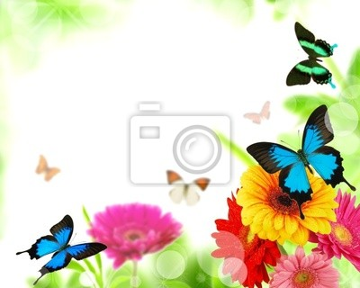 Bild Schöne Natur Hintergrund