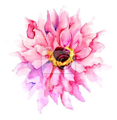 Schöne rosa Blume