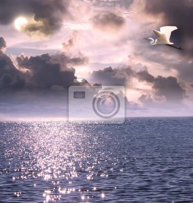 Schöne weiße Silberreiher fliegen über den Ozean