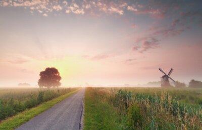 Bild Schönen Sommer Sonnenaufgang auf niederländischen Ackerland