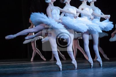 Schönheit, Beweglichkeit, Tanzkonzept. Arm in Arm vier elegante und anmutige weibliche Ballett-Tänzer, spielen die Rollen der zierlichen Schwäne, bewegen, tanzen und springen synchron