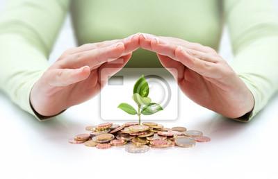 Bild Schutz neuer Start-up - mit Händen und Pflanze